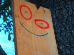 Plank #3 by Grassology