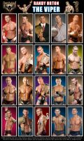 Randy Orton Poster by Chirantha