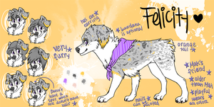 Felicity Ref by makimotto