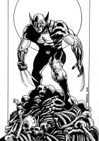 Bone Crusher Wolverine by Dedefox