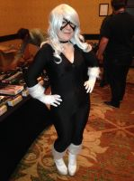 Blackcat - 2013 Jack 'O Con by The-1One