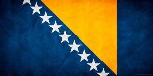 Bosnia and Herzegovina Flag G by think0