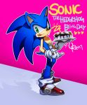 happy Bday sonic 22nd by lujji