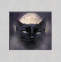 Night Cat for JocelyneR by GypsyH
