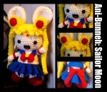 She is the one...Sailor Moon by stina-marie