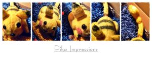 Pika Impressions by Plushbox