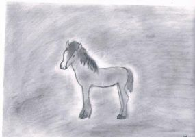 clydesdale foal by whenwolveshowl