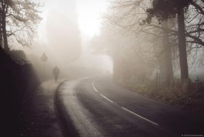 Foggy day by Anlin