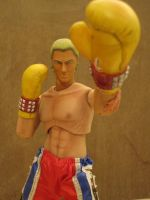 THE BOXER STEVE FOX by efrece
