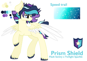 NG Prism Shield - Reference Sheet by Cheschire-Kaat