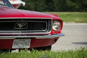 Red Mustang Front Detail by joerayphoto