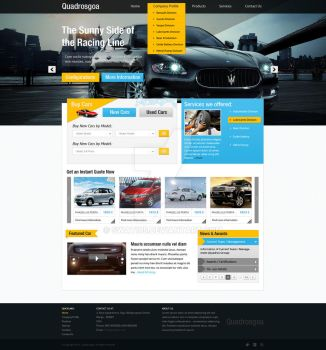 Selling Cars by swati05