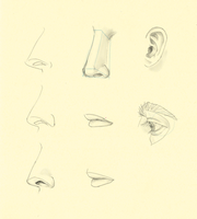 Hampton p.56-85: Nose + Eye + Mouth Studies by theThirdCartel