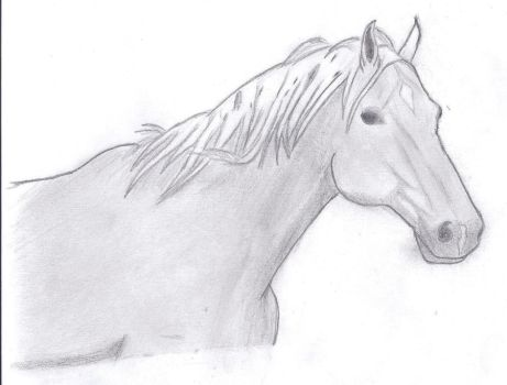 Horse by assilem7772010