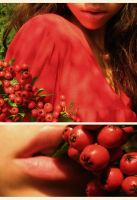 Among the red, red rowan.. by assica
