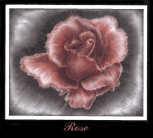 .Rose. by Renartistic