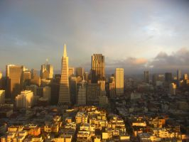 San Francisco from Coit Tower. by vampyric-amoeba