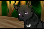 Ravenpaw Sketch by Sasu-Coffee