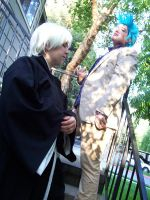 Bleach: Grimmjow and Gin by MouseAlchemist
