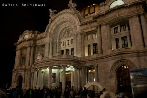 Proyecto 365: Dia 055 by arielshinigami