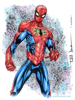 All New All Different Marvel Spider-Man by ToddNauck