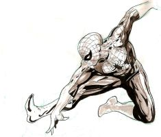 spiderman warm up by Sigint