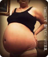 Thirty seven weeks. by andrea-williams