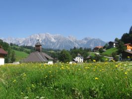 Austrian Alps in Summer by Dancercjt