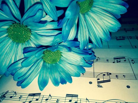 Daisy Music 1 by eternalsailorpisces
