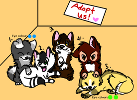Puppy Adoptables - Name your price by WolfTwine
