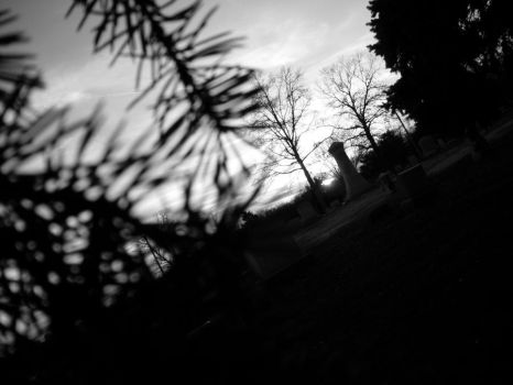 Cemetery Lurker. by TheUndoneAngel