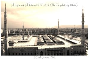 Mohammed's Mosque v1. by bx