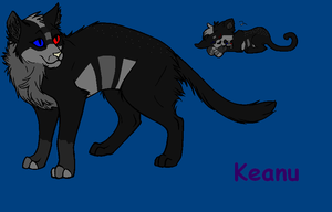 Keanu Ref BREEDABLE OPEN by Sterling-Adopts