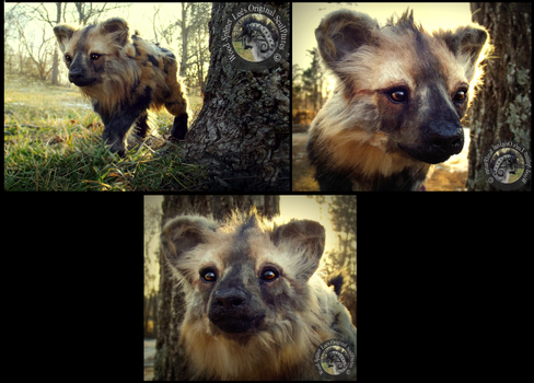 -SOLD- HAND MADE Poseable Hyena Pup! by Wood-Splitter-Lee