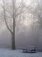 Park Bench in Fog and Frost. by Grunvald