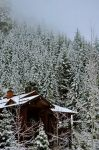 Whistler Cabin by melcow