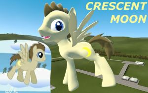 Crescent Pony Garrysmod Pony *Update* by LunarGuardWhoof