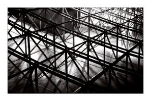 flight - ceiling structure by redux