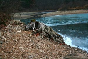 Iced Over bluemarsh by pandagog