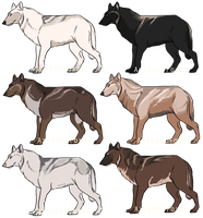 Wolf Adopts by AxesAndFoxes