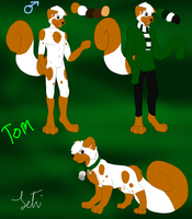 Tom ref sheet .:2013:. by Letipup