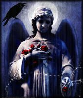 Suffering Rose Angel by fallnangeltears