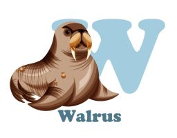 W is for Walrus by RSImpey
