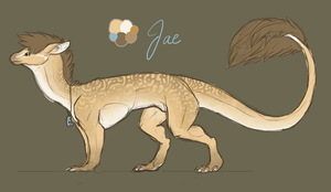 Jae design by SashaWren