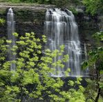 Salmon River Falls by jamberry-song