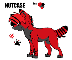 NUTCASE REF by NatsuTheNinza