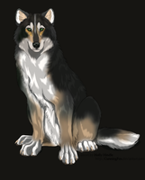 Wolf Adoptable 2 CLOSED by Themystichusky