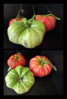 Home Grown Tomatoes by devianb