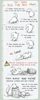 The Roly Poly Help Sheet by samuel123