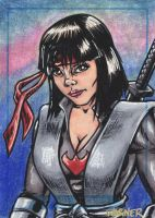 Karai sketch card by JLWarner